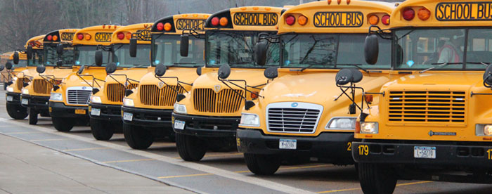 Image of parked school buses